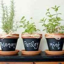 60 easy to try herb garden indoor ideas (21)