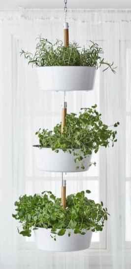 60 easy to try herb garden indoor ideas (25)