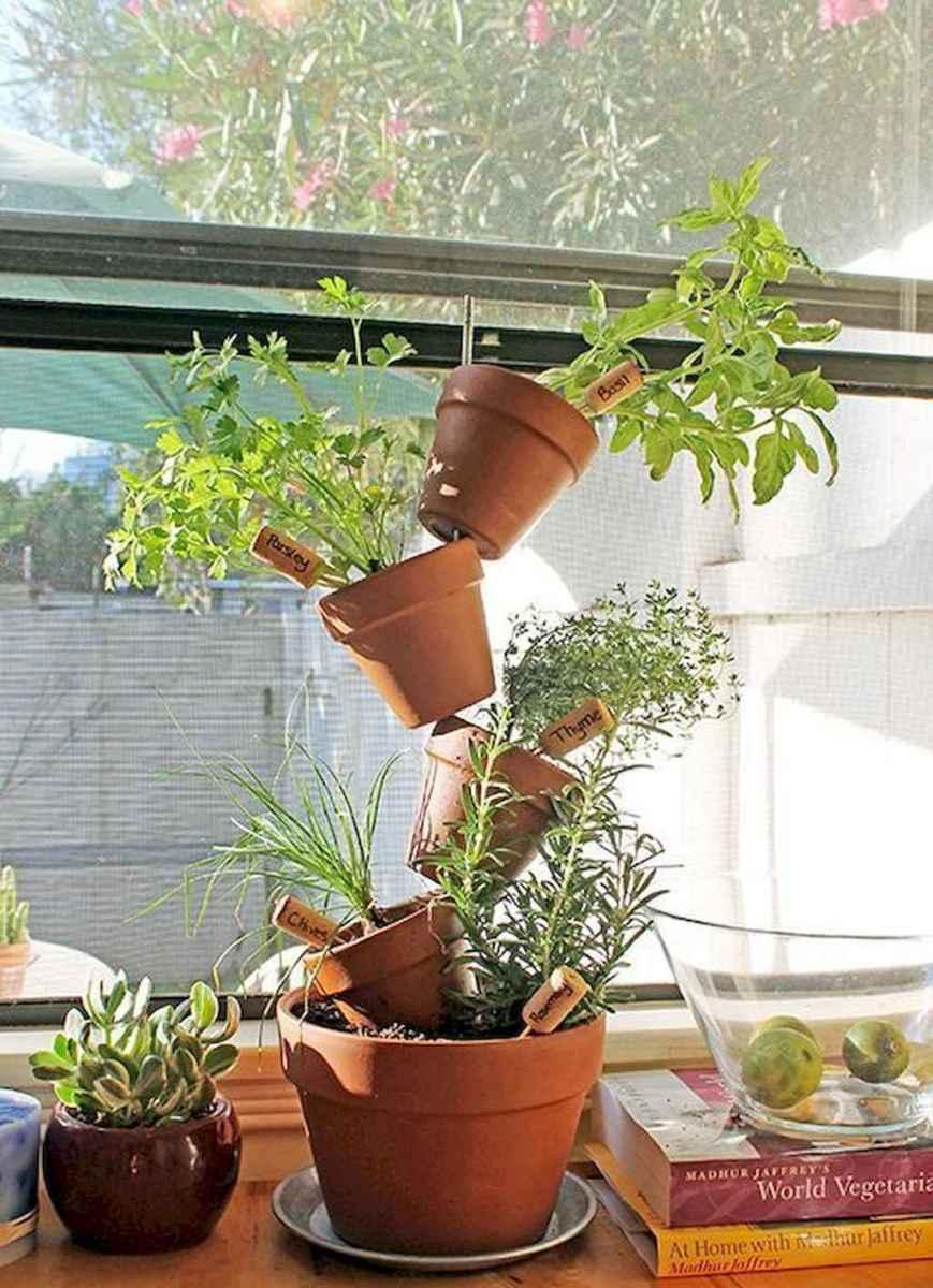 60 easy to try herb garden indoor ideas (43)