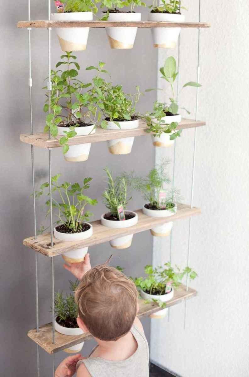 60 easy to try herb garden indoor ideas (53)