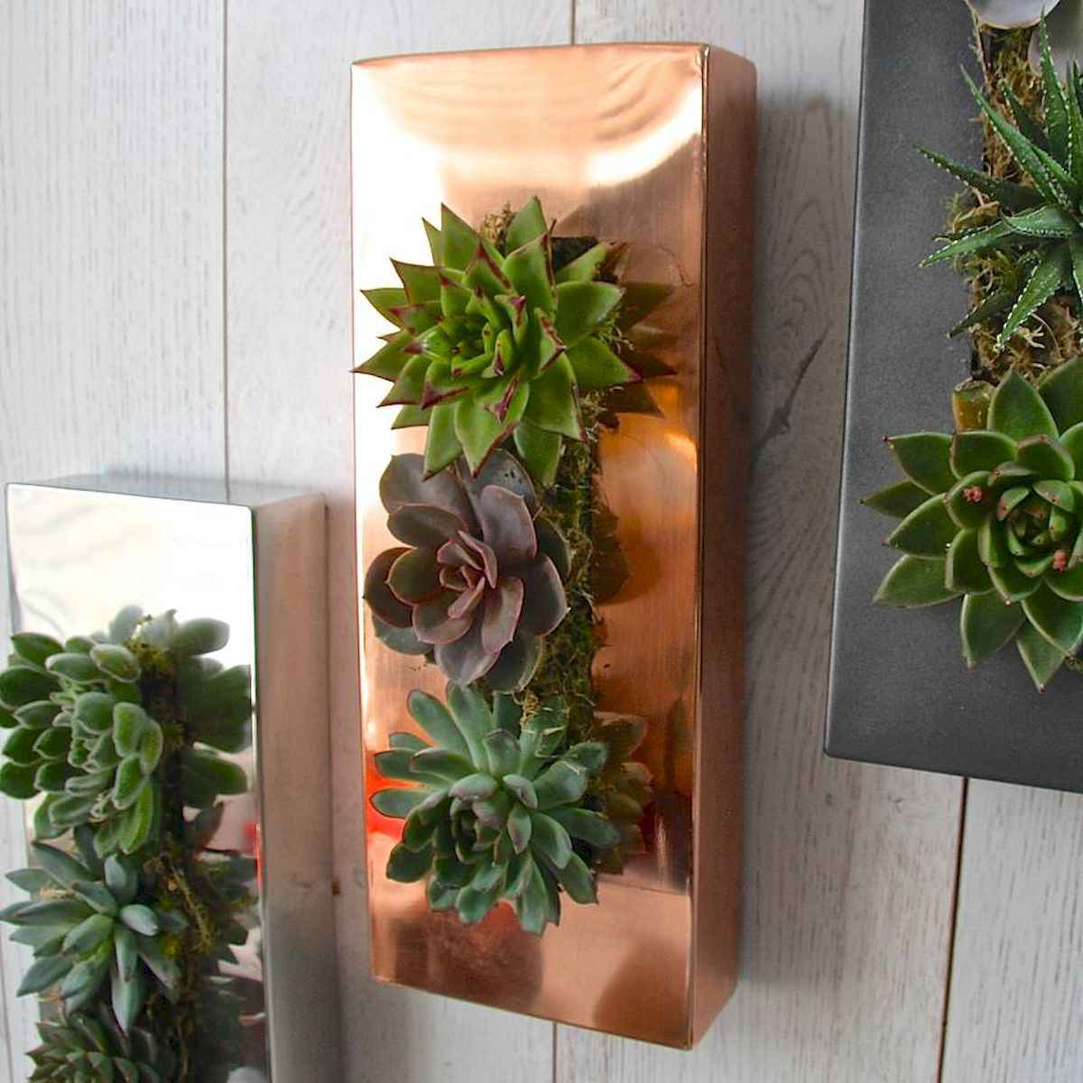 40 beautiful living wall planter garden ideas decorations and remodel (22)