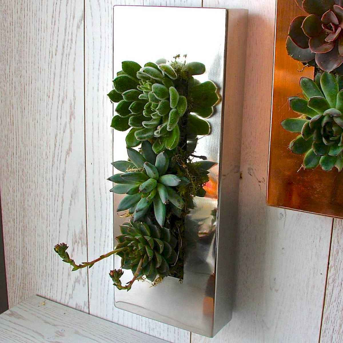 40 beautiful living wall planter garden ideas decorations and remodel (23)