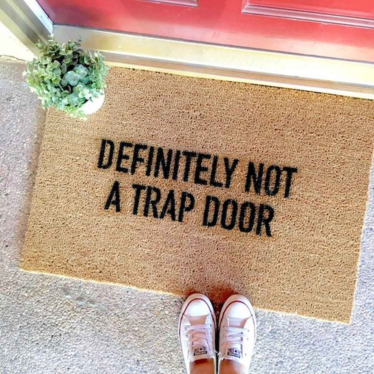 20 funny rug door mats design ideas (7)
