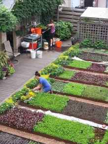 35 stunning vegetable backyard for garden ideas (31)