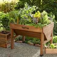 35 stunning vegetable backyard for garden ideas (4)