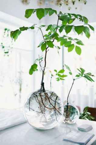 55 greeny indoor plants ideas that will purify your room's air (25)