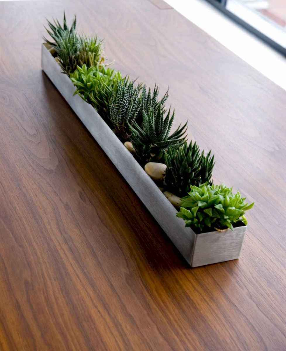 55 greeny indoor plants ideas that will purify your room's air (44)