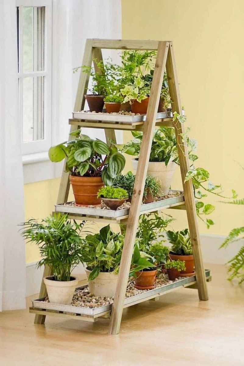 55 greeny indoor plants ideas that will purify your room's air (49)