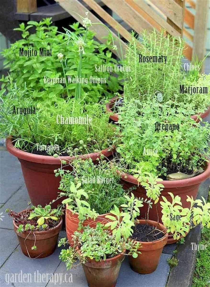 Adorable diy container herb garden design ideas (1)