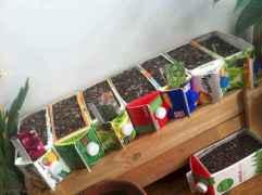 Adorable diy container herb garden design ideas (28)