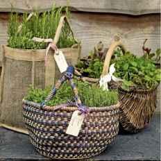 Adorable diy container herb garden design ideas (33)