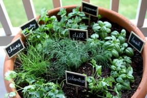 Adorable diy container herb garden design ideas (41)