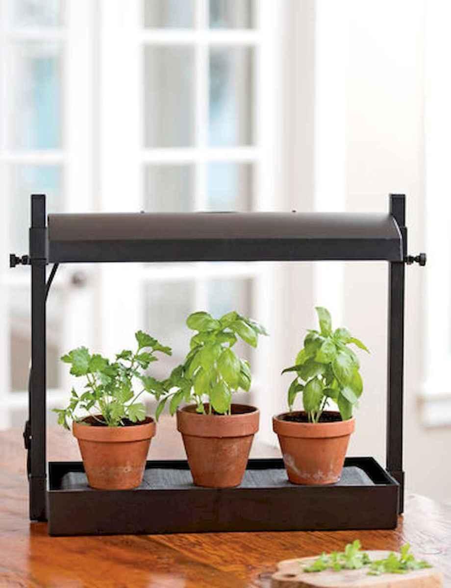 Adorable diy container herb garden design ideas (8)