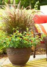 Best summer container garden ideas 15