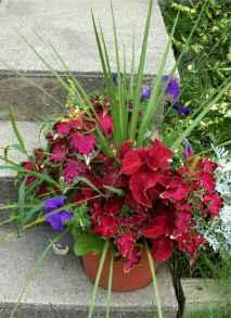 Best summer container garden ideas 19