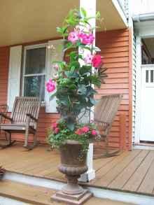 Best summer container garden ideas 20