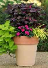 Best summer container garden ideas 21
