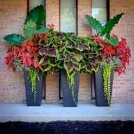 Best summer container garden ideas 37
