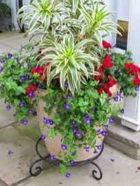 Best summer container garden ideas 46