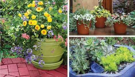 Best summer container garden ideas 48