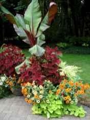 Best summer container garden ideas 50