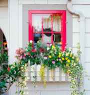 Best summer container garden ideas 57