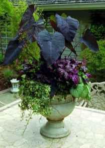 Best summer container garden ideas 60