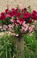 Best summer container garden ideas 64