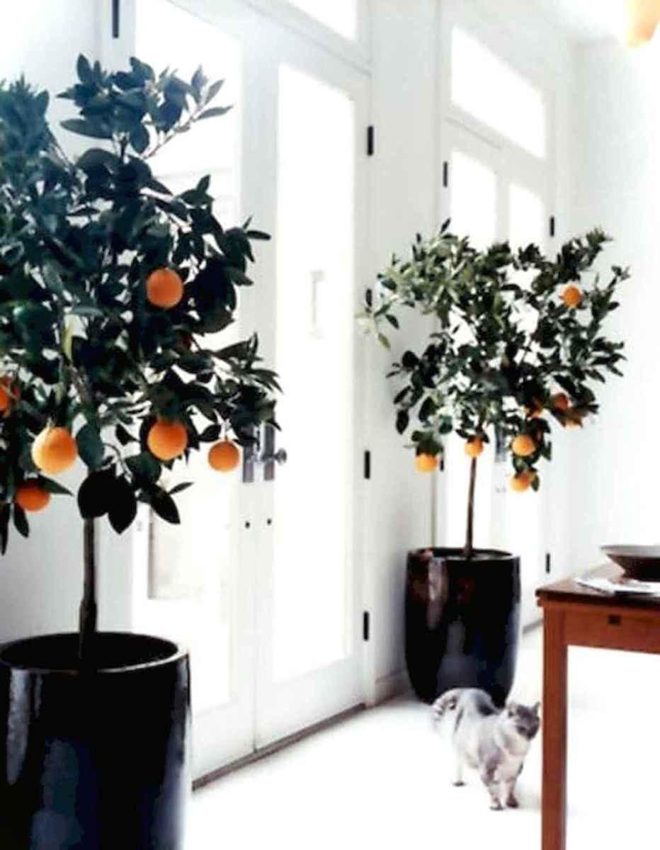 009 best apartment living room decorating ideas