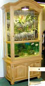 Relaxing aquascaping ideas for inspiration 30