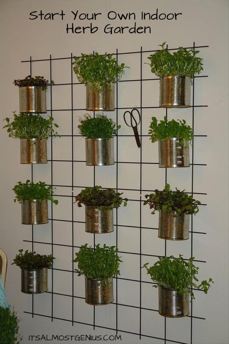 10 Easy DIY Kitchen Herb Gardens Room  Bath
