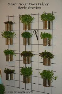 10 Easy DIY Kitchen Herb Gardens -Room & Bath