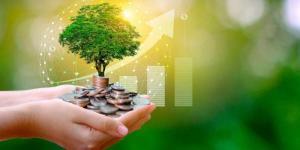 Beneficios de los muebles sostenibles y ecológicos