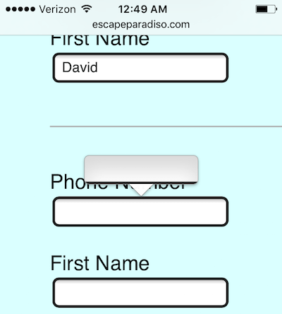 Name and phone number submission form viewed on an iPhone. The clock reads 12:49 AM and the paste function is visibly broken.