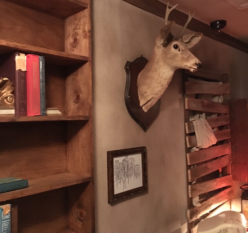 Image of the Study. A bookcase with a few books on it, a taxidermied buck, and a boarded up window.