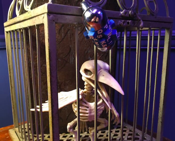 In-game: A bird skeleton in a a cage. The cage is locked with a 5 digit combination lock.
