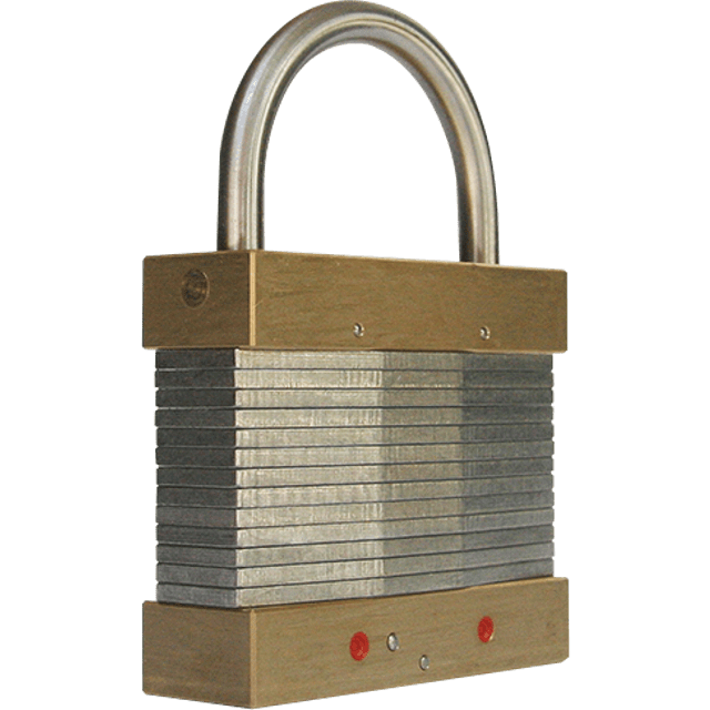 A T10 tick lock produced by Popplock. It is steel and brass, and looks like it has a laminated construction (but it isn't).