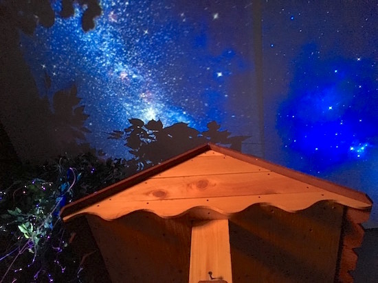 In-game: the roof a well beneath a large tree and the night sky.