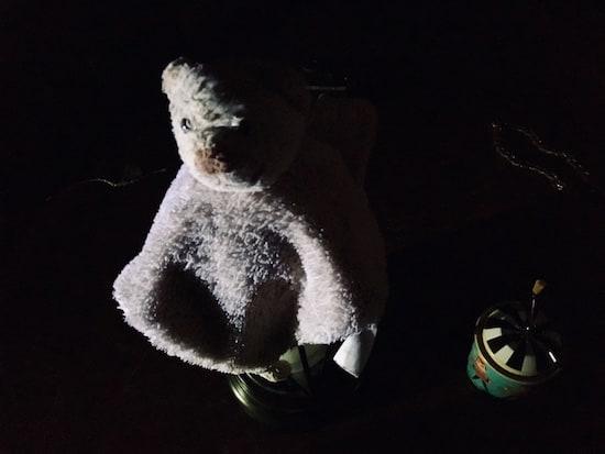 In-game: A skinned stuffed animal in a dark room.
