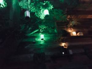 In-game: A tree with glowing tubes hanging from that function as the game's clock.