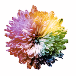 A flower depicting the color spectrum in Deuteranomaly