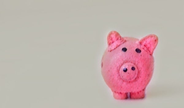 A pink piggy bank looking into the camera.