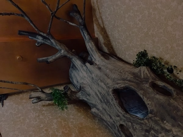 In-game: a large tree growing out of the wall with a strange hole in it.