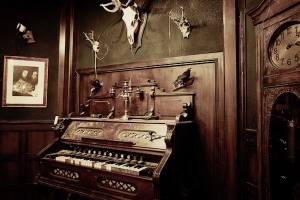 In-game: an old dusty organ in a study, the walls are adorned with trophy skulls and taxidermy birds.