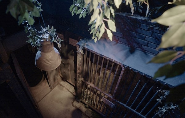 In-game: Overhead shot of a cage in a rundown zoo at night.