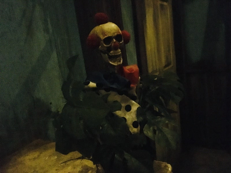 In-game: A plant that includes the shrunken head of a clown.