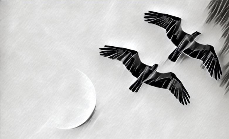 Black & white stylized image of two large birds flying overhead.