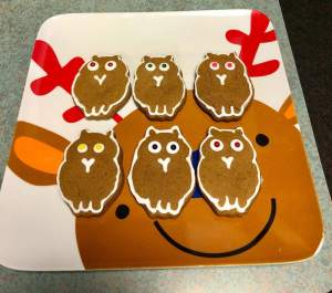 6 homemade gingerbread owls.