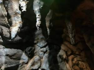 In-game: stalactite hanging in a cave. They look wet.
