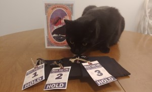 Black cat inspecting a series of locked backs with White Star Line First Class baggage tags.